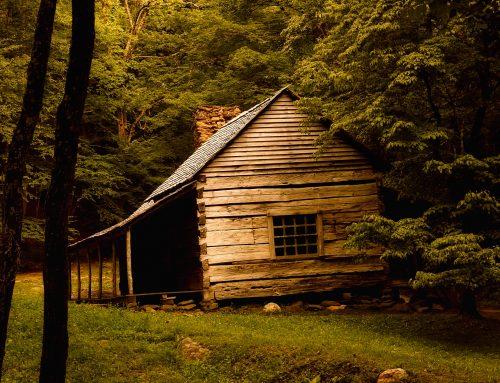 Conflits en entreprise familiale: 5 raisons pourquoi la chicane est pognée dans cabane!