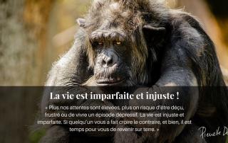 singe découragée vie injuste texte