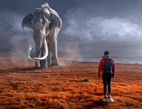 Le mammouth qui piétine notre ego: pourquoi réagissons-nous tant à la critique?